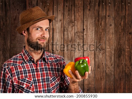 Happy smiling caucasian forty years old farmer or gardener in hat holding peppers in hand on rustic vintage planked wood background - agriculture. Food production - vegetables. Layout with text space. - stock photo