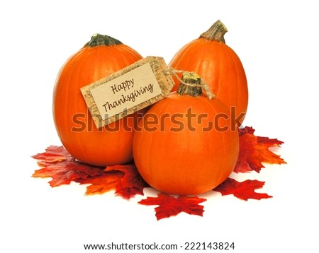 Happy Thanksgiving tag with cluster of pumpkins and autumn leaves over white - stock photo
