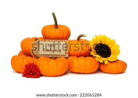 Happy Thanksgiving tag with group of mini pumpkins over white - stock photo