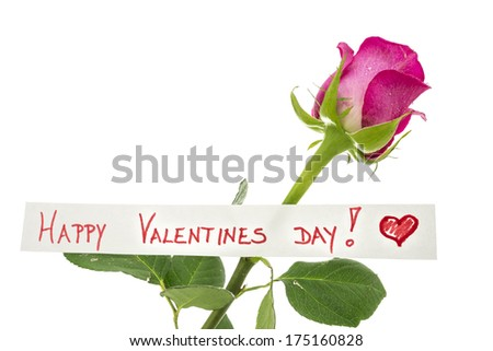 Happy Valentines Day greeting card with a handwritten message and beautiful single long-stemmed pink rose symbolising love and commitment over white with copyspace. - stock photo