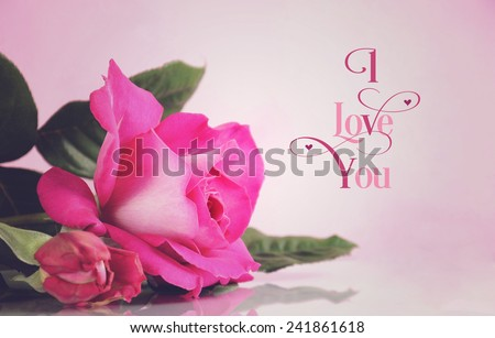Happy Valentines Day greeting with retro vintage style pink rose with I Love You sample text greeting message. - stock photo