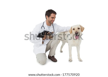 Happy vet posing with yorkshire terrier and yellow labrador on white background - stock photo