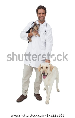 Happy vet smiling at camera with yorkshire terrier and yellow labrador on white background - stock photo