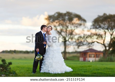 Happy wedding couple walking along the field embracing and kissing at evening time - stock photo