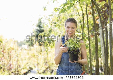 Happy woman looking at potted plant in garden - stock photo