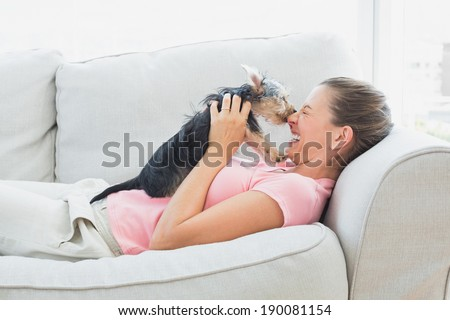 Happy woman playing with her yorkshire terrier on the couch at home in the living room - stock photo
