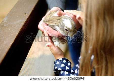 Happy young girl petting baby rabbit - stock photo