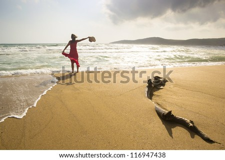 Happy young woman enjoys being on a wild beach - stock photo