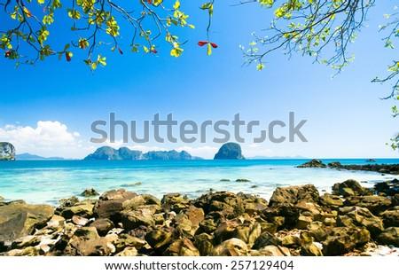 Harbor Waters Jungle Lagoon  - stock photo