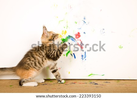 Hard to find and rare image of cat actually painting on white canvas - stock photo