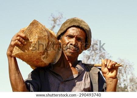 Hard working man carrying a tree trunk - MADAGASCAR poverty - stock photo