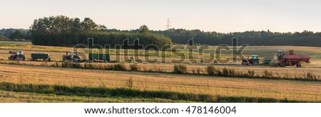 Harvest, autumn field work in Poland