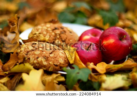 Harvest. Autumn still life with red apples and leaves - stock photo