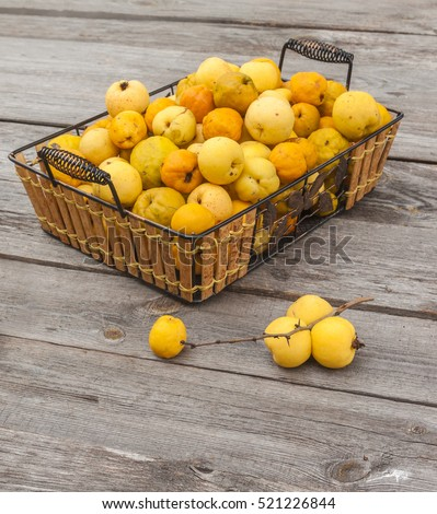 Harvest fruit Japanese quince (Chaenomeles japonica) on a wooden table