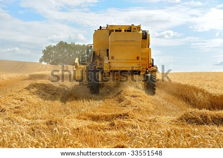 Harvest of grains in french.