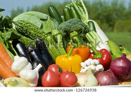 Harvest of vegetables
