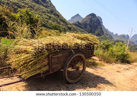Harvest on a chariot near the road side in Asia - stock photo