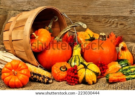 Harvest pail of spilling autumn vegetables on burlap and wood background