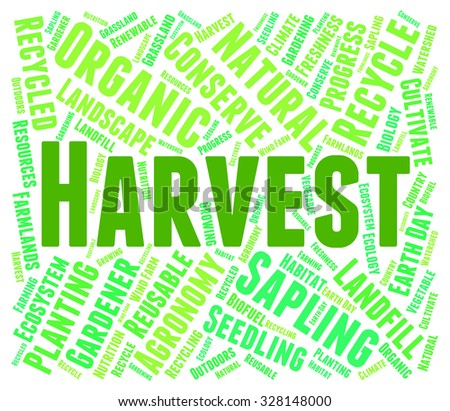 Harvest Word Showing Grain Crops And Grains