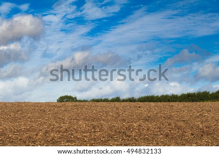 Harvested field background with hedge and sky