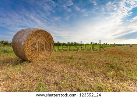 Harvested Field with Straw Bale - stock photo