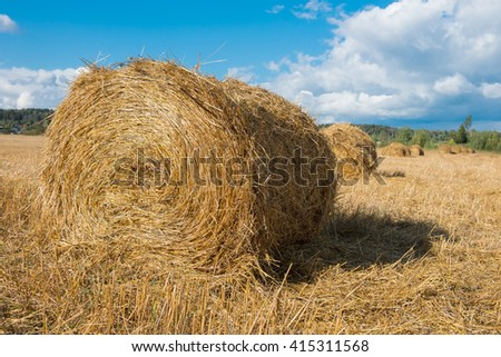 Harvested field with straw bales hay-roll in summer - stock photo