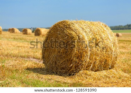 harvested field with straw bales in summer - stock photo