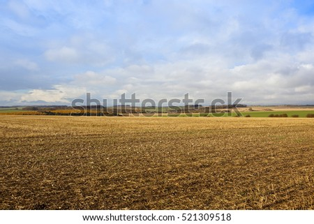harvested fields in a yorkshire wolds landscape with colorful larch woodland and hills in autumn under a blue cloudy sky
