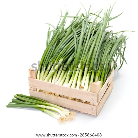 Harvested fresh spring onions in wooden crate - stock photo