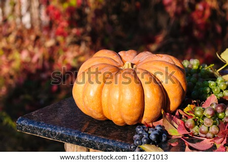 Harvested pumpkin with grapes and fall leaves