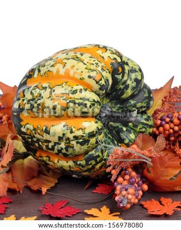 Harvested pumpkins - stock photo