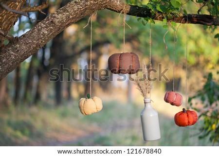 Harvested pumpkins decorate - stock photo
