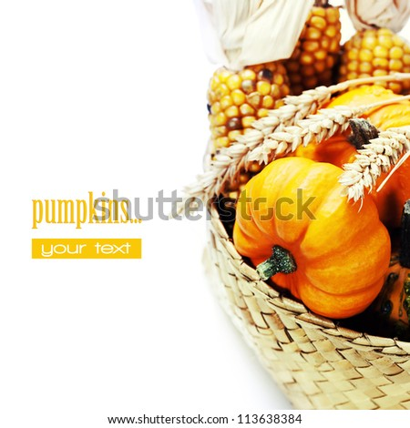 Harvested pumpkins with fall leaves. With easy removable sample text - stock photo