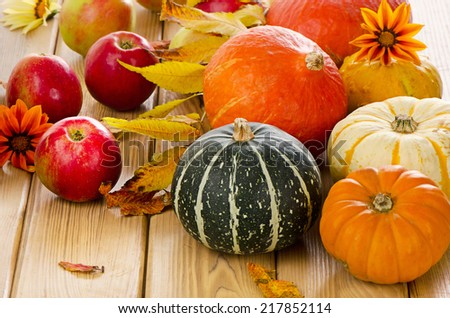 Harvested pumpkins with red apples  and  fall leaves. Selective focus - stock photo