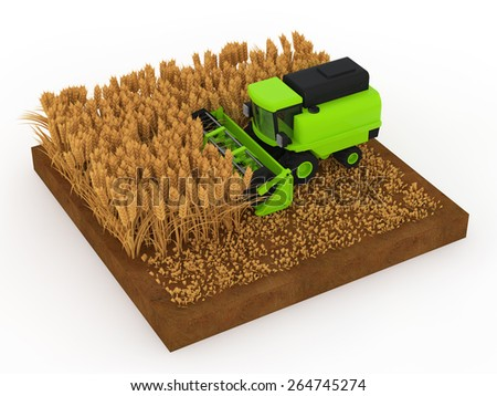 Harvested wheat in the combine - stock photo