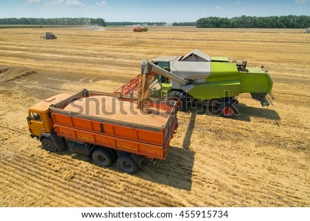 Harvester loading grain into truck at field on sunny hot day during harvest time - stock photo