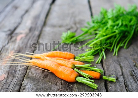 Harvesting bunch of fresh washed carrot on the old wooden background