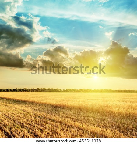 harvesting field and sunset in clouds over it - stock photo