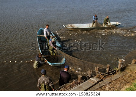 Harvesting Fish at Fish Farm. People at Work. Commercial Fishing. Fishermen Pulling Fishing Net.  - stock photo