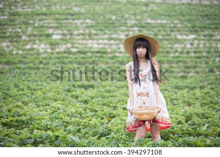 Harvesting girl on the strawberry field - stock photo
