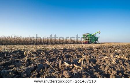 Harvesting of corn field in autumn - stock photo