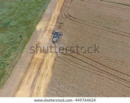 Harvesting wheat harvester. Agricultural machinery in operation. - stock photo