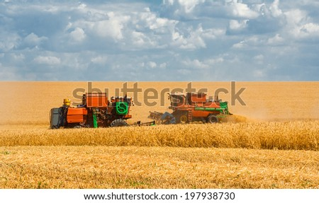 Harvesting wheat harvesters on the background field and blue sky with clouds
