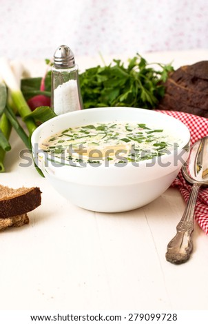 hash - a traditional Russian cold soup from cucumbers, radishes, greens with egg and yogurt, Okroshka
