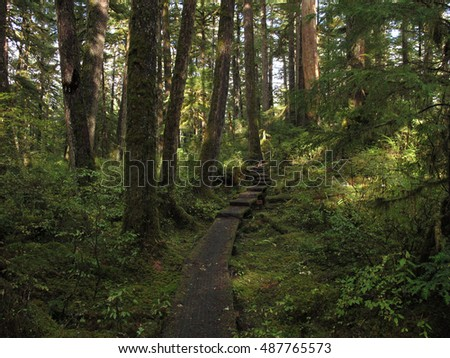 Hatchery Creek Falls Trail, Prince of Wales Island, Alaska