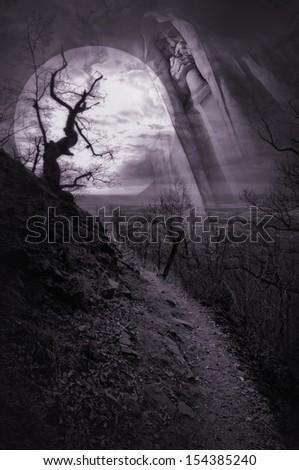 haunted pathway - stock photo
