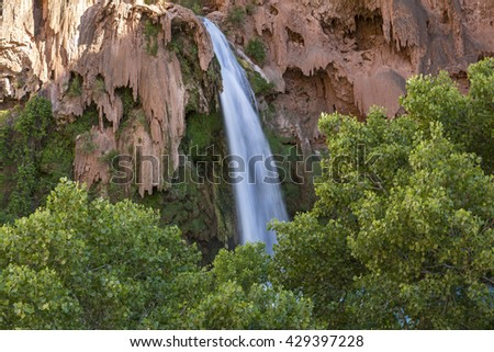 Havasu Falls plunges behind a canopy of Cottonwood Trees on the Havasupai Indian Reservation in the Grand Canyon. - stock photo