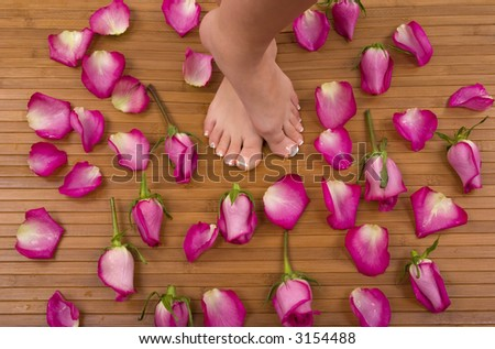 Having spa treatment (pedicured feet surrounded by bright pink roses) - stock photo