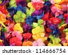 Hawaii flowers background - stock photo