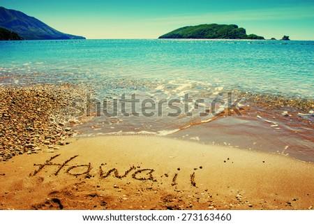 Hawaii island/ summer holidays background - stock photo